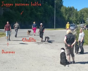 Jogger passerer